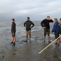 Wadlopen is een unieke en sportieve belevenis in de natuur van het Werelderfgoed Waddenzee. De Waddenzee Wad anders!!